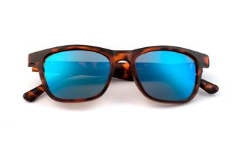 Wildgo SAPPHIRE SUN, havana/blue, large