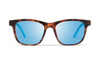 zafiro-kolorea, havana/blue, large