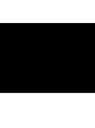 Satyrium spini